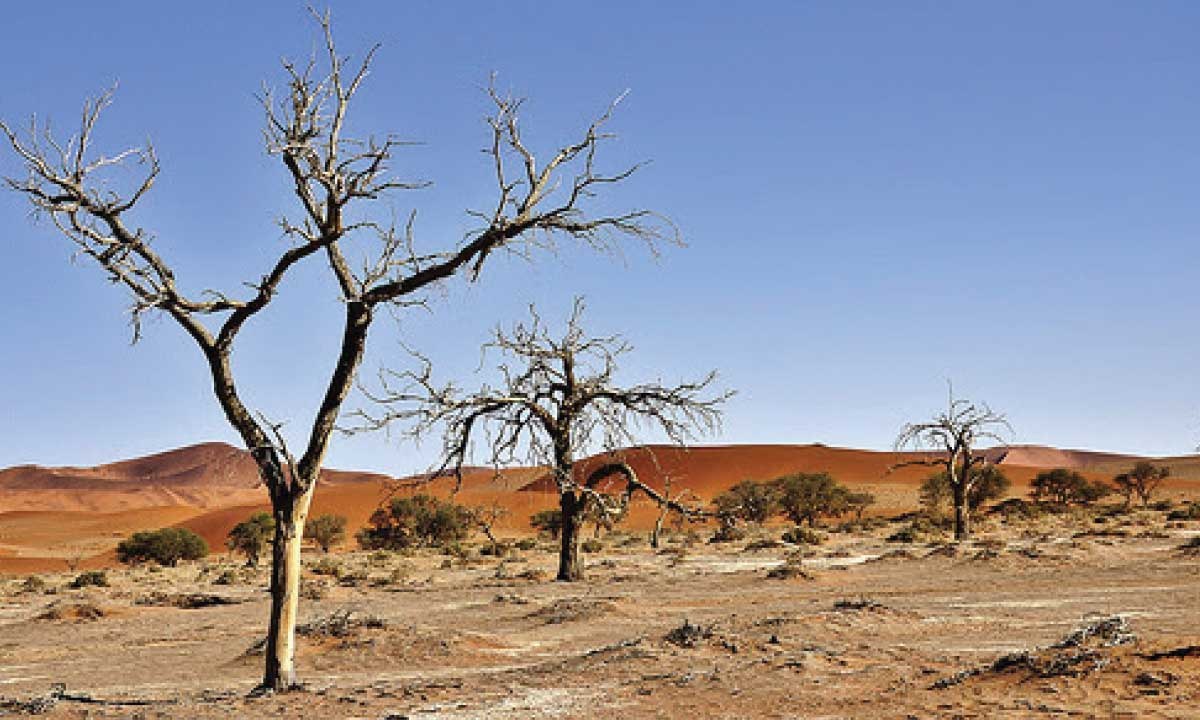 desertification which hampers development in namibia The harambee prosperity plan (hpp) is constructed around the namibian narrative it acknowledges that nida namibia industrial development agency.